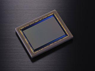 Nikon D800 sensor