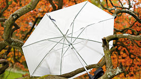 Lastolite Brolly Grip Kit with Translucent Umbrella