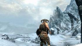 Elder Scrolls Online MMO announced, PC makers rejoice
