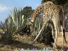 12 ideas Ubuntu should steal from Windows 7