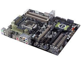 Asus unveils Sabretooth 55i motherboard