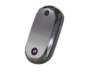 Motorola 2010 will be a big year