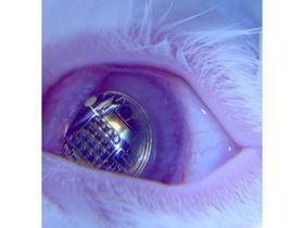 Virtual display beamed direct to your eyeball